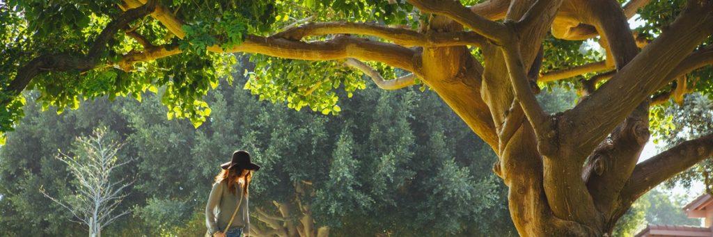 Fem tankar som håller dig tillbaka - och står emellan dig och ditt nya liv.