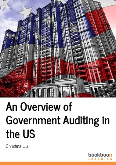 An Overview of Government Auditing in the US
