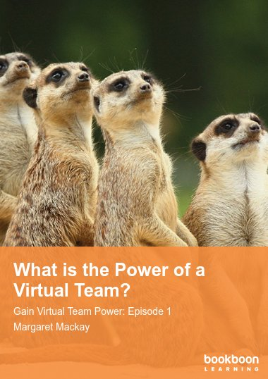 What is the Power of a Virtual Team?