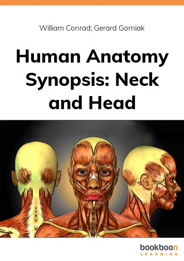 Human Anatomy Synopsis: Neck and Head