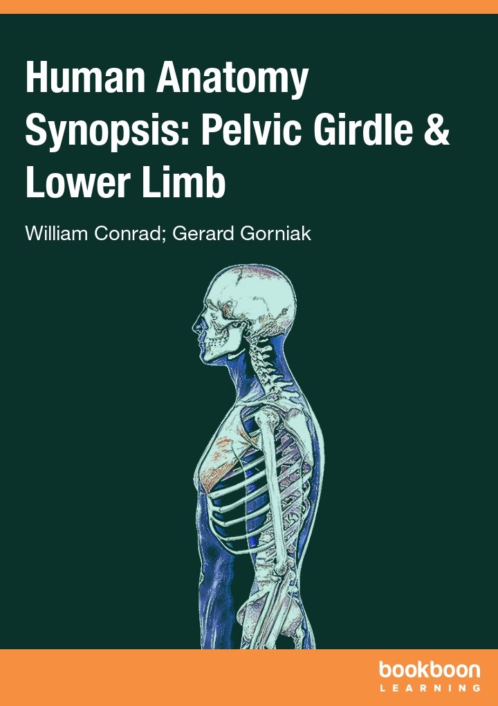 Human Anatomy Synopsis: Pelvic Girdle & Lower Limb